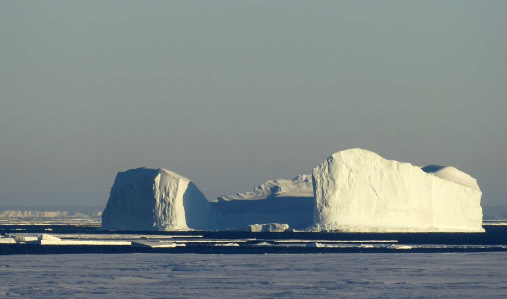 On the way home, we saw more beautiful icebergs, lying in the deep blue sea