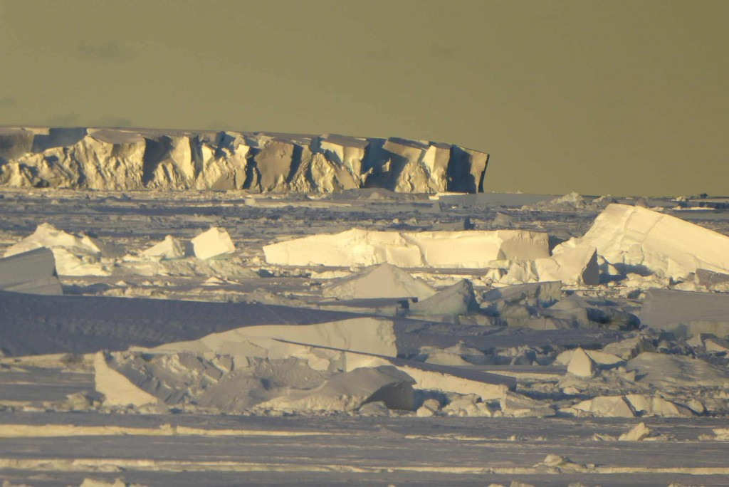 The sea ice kept coming back after the main break-up when easterly winds prevailed